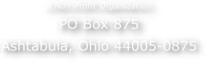 A Non-Profit Organization